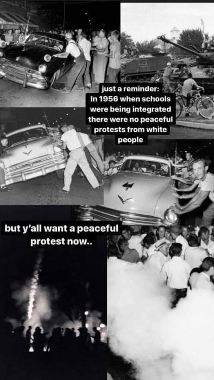 protests.jpg