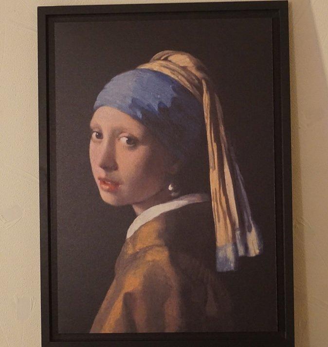 Vermeer-1.jpg.21a6b2b8c6e62243cba6f62639f3344c.jpg